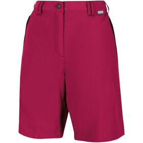 Regatta Chaska II Spodnie krótkie Kobiety, czerwony